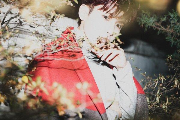 Ryeowook profile image