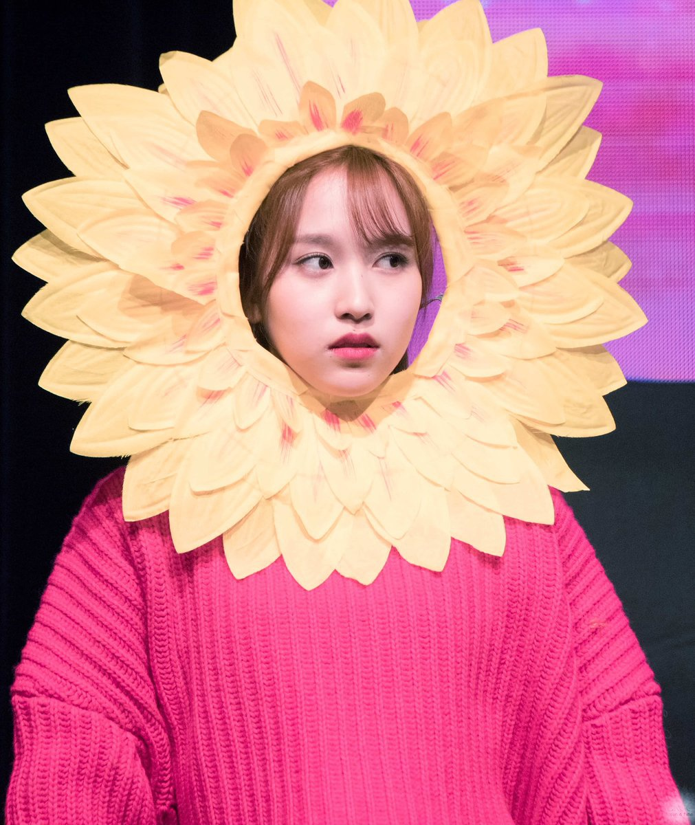 Happy Birthday Mina unnie💚 Thanks for being born💚 Thanks for being you💚 And thanks for your presence in my youth😏 I wish you all the best💚