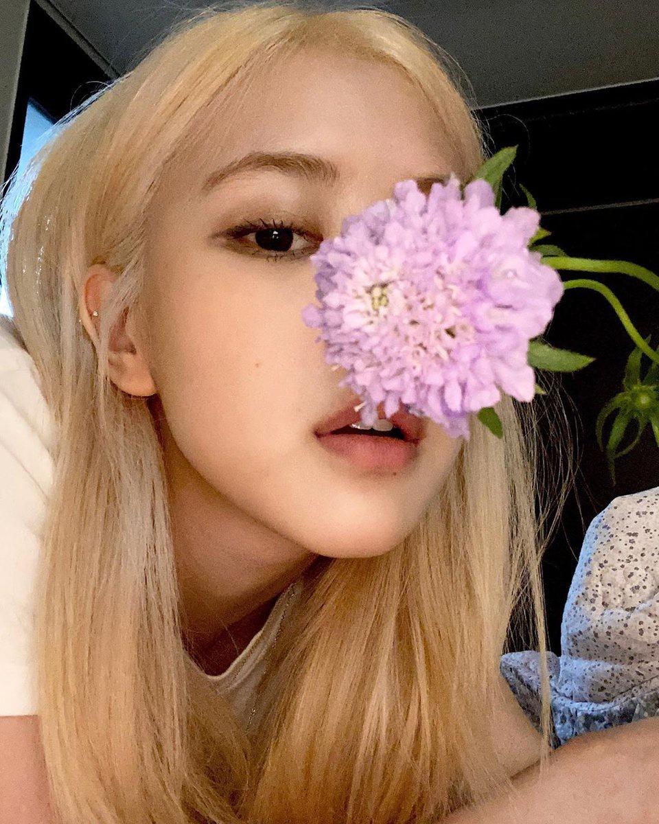 """[roses_are_rosie] 200615 Instagram update : """"🌸"""" 🔗 …_1"""