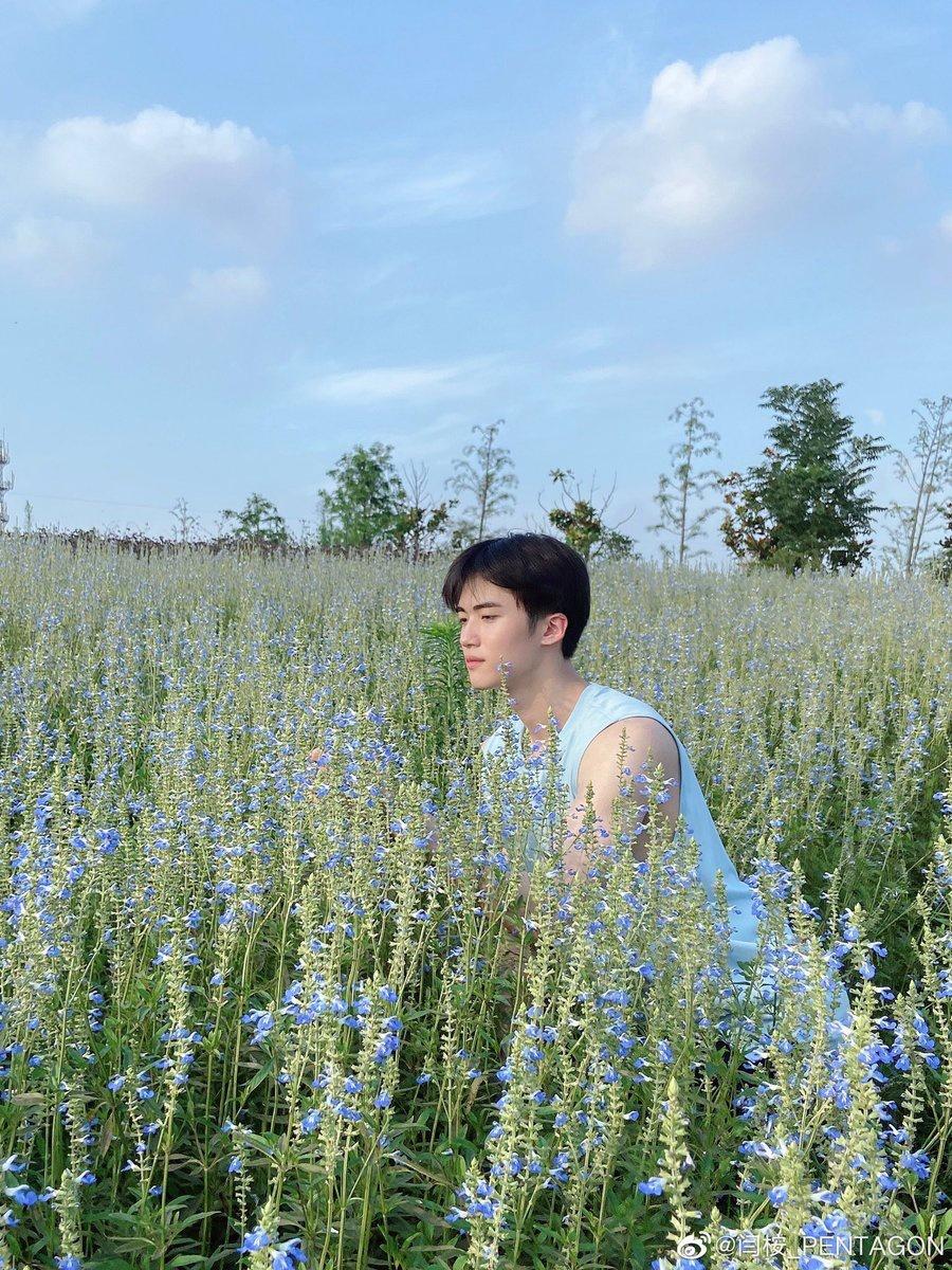 200629 Weibo微博 イェナン 🌞☁️🌷 お花畑にいる可愛いイェナンちゃん🐼💕_4