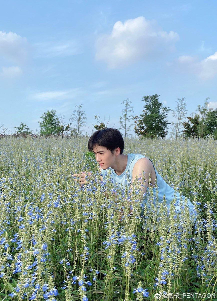 200629 Weibo微博 イェナン 🌞☁️🌷 お花畑にいる可愛いイェナンちゃん🐼💕_3
