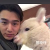 "090520| Instagram Story Güncellemesi ""Alpaka"""